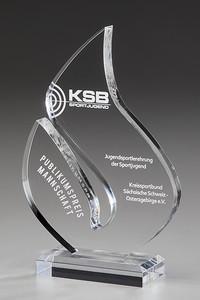 Brilliance Acryl Award Annette