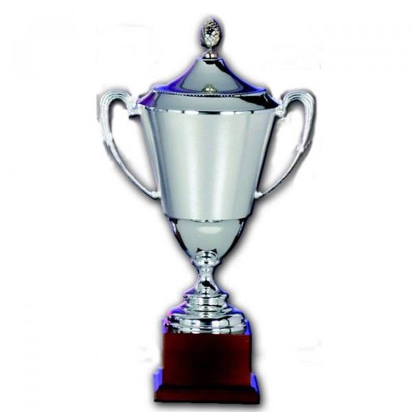 Siegerpokal Vereinssport Trophy attraktives Versilbert