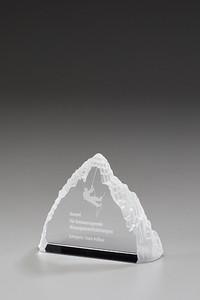Iceberg Award Kristi