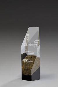 Kristallglas Award Descant-G