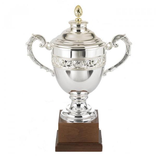 Sportpokal Ehrung Auszeichnung Versilbert