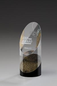 Kristallglas Award Praise-G